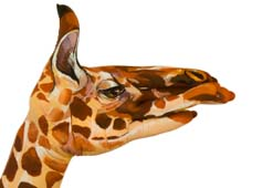 Hand painted in the form of a giraffe